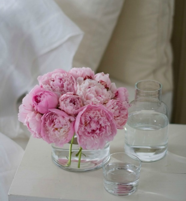 peonies by bed